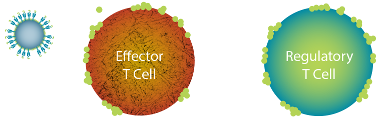 Navacims can reprogram disease- or tissue-specific cells to orchestrate reversal of disease.